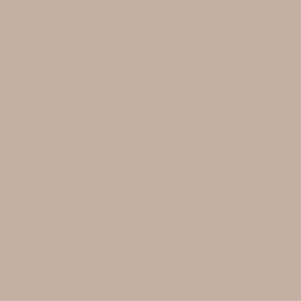 Бумага для пастели LANA: LANA Бумага для пастели,160г, 50х65,жемчужный, 1л. в Шедевр, художественный салон
