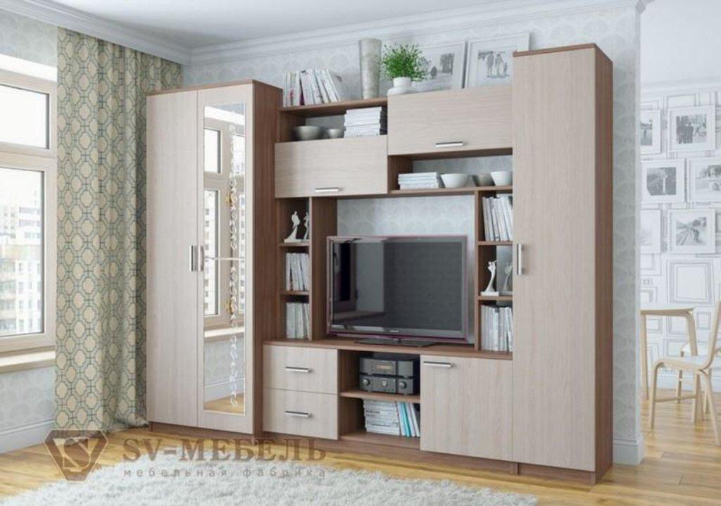Мебель для гостиной Гамма-16: Шкаф Гамма-16 в Диван Плюс