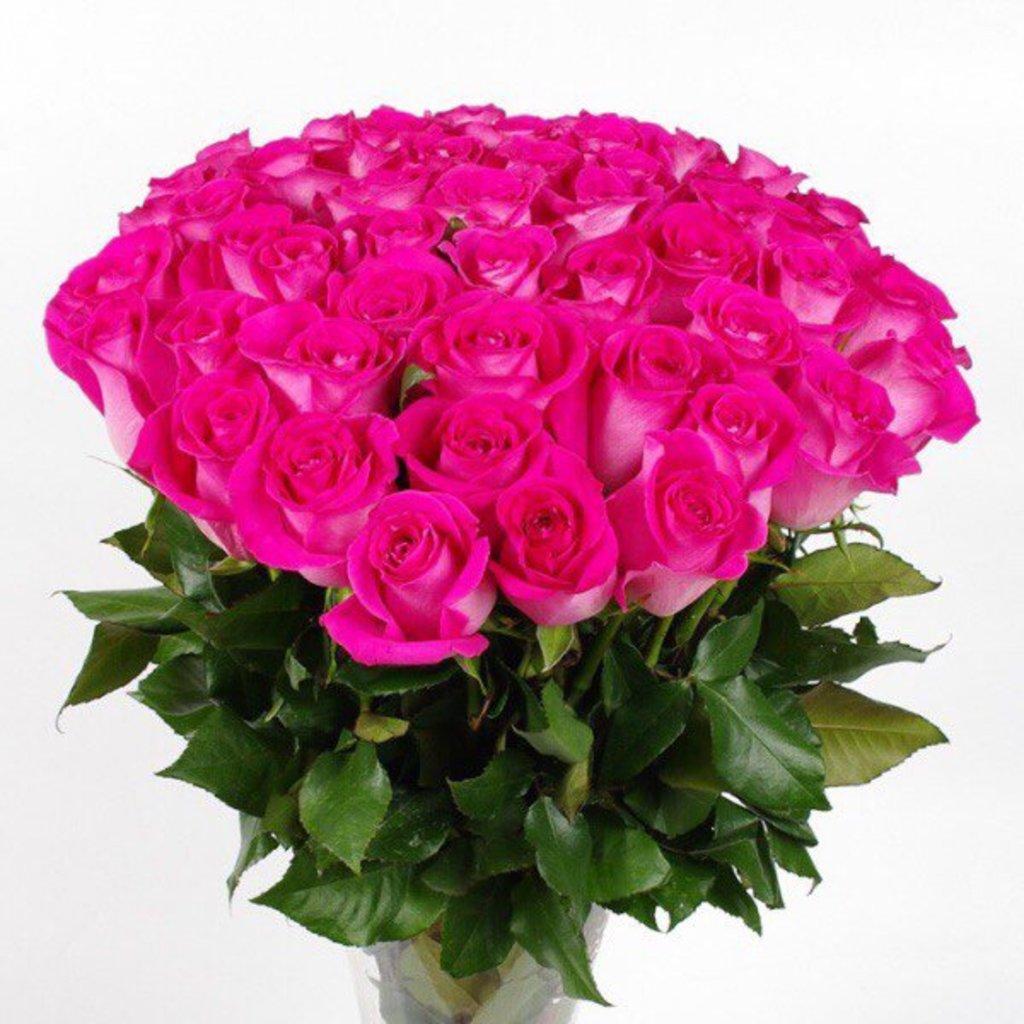 Цветы: Розы малиновые в Николь, магазины цветов