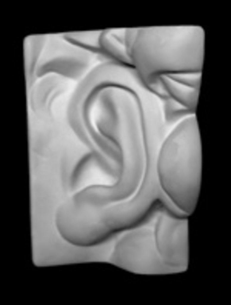 Гипсы: Ухо Давида левое в Шедевр, художественный салон