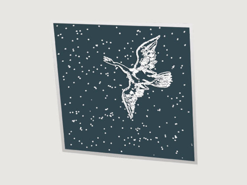 Зеркальные потолоки: Серия «Созвездия» в Мир Потолков