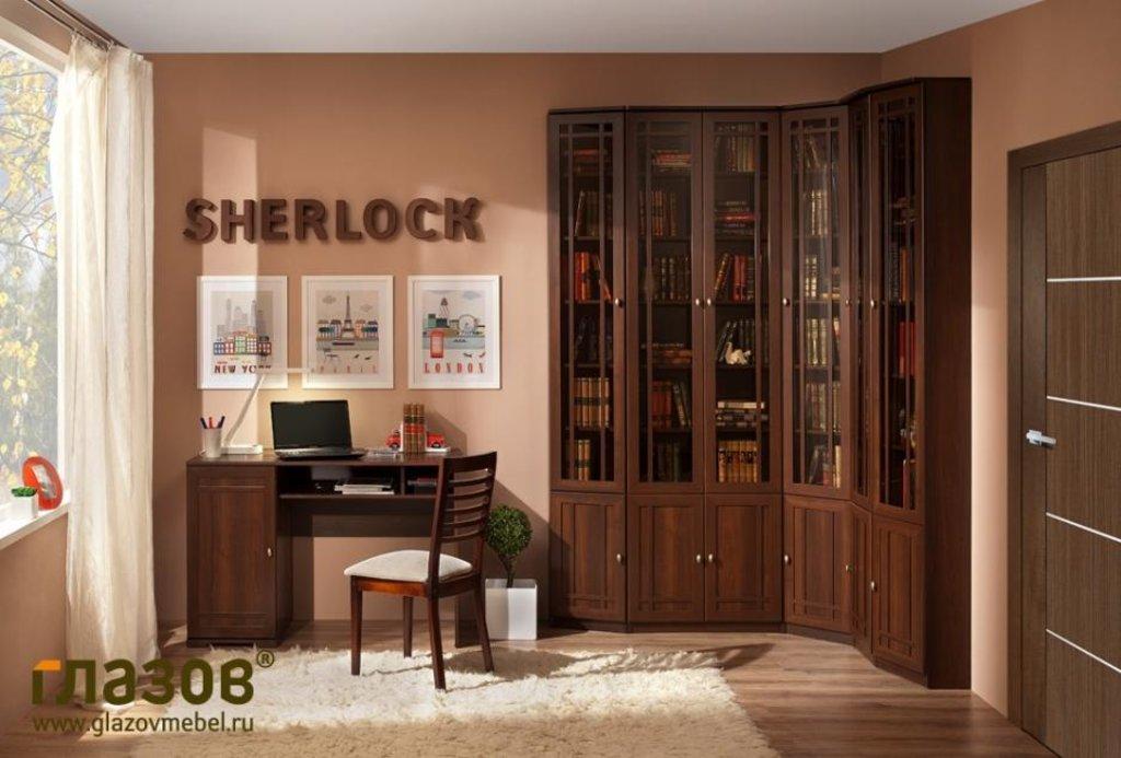 Модульная библиотека SHERLOCK (Орех шоколадный, Ясень Анкор темн.): Модульная библиотека SHERLOCK (Орех шоколадный, Ясень Анкор темн.) в Стильная мебель