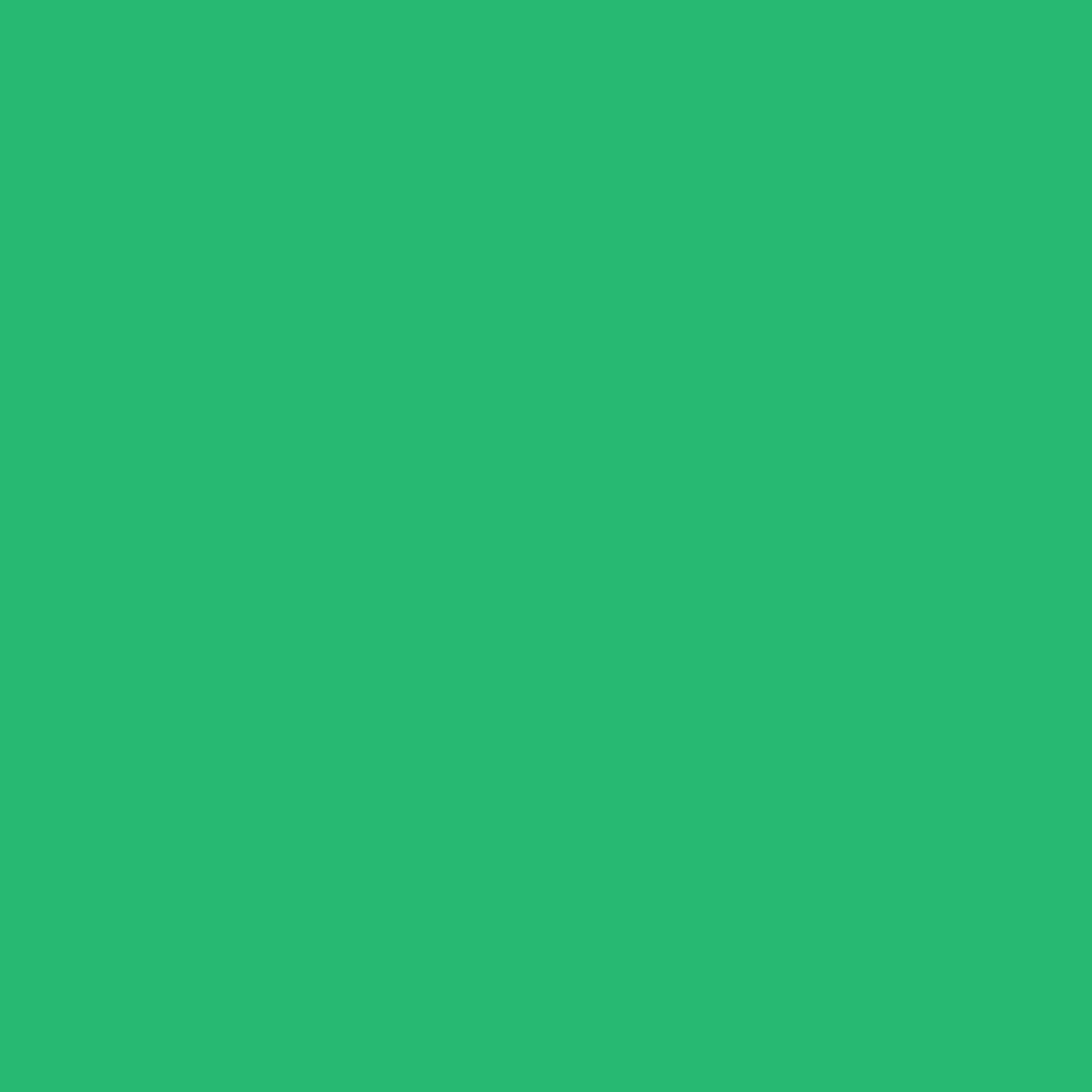 Бумага цветная А4 (21*29.7см): FOLIA Цветная бумага, 300г, A4, зеленый изумруд, 1 лист в Шедевр, художественный салон