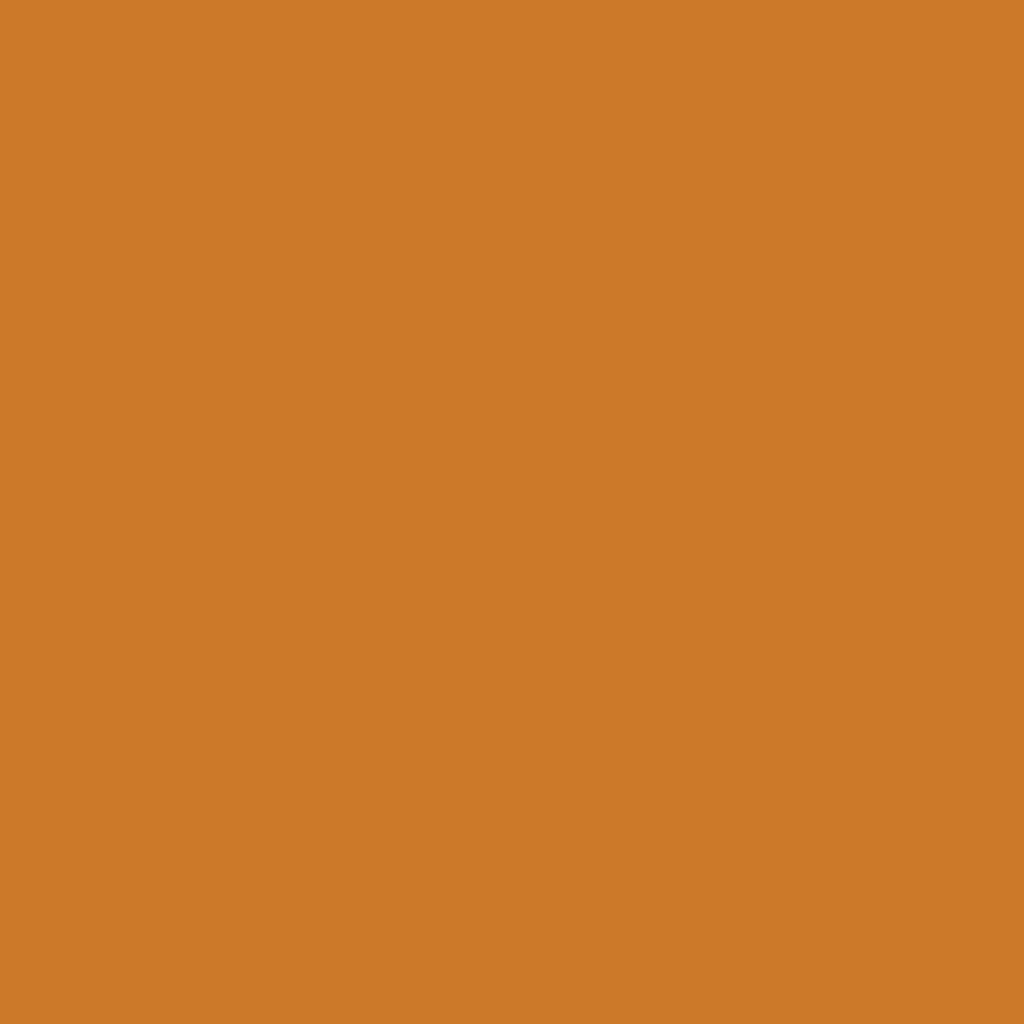 Бумага цветная А4 (21*29.7см): FOLIA Цветная бумага, 130г A4, терракота, 1 лист в Шедевр, художественный салон