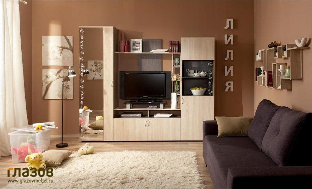 Модульная мебель в гостиную Лилия: Модульная мебель в гостиную Лилия в Стильная мебель