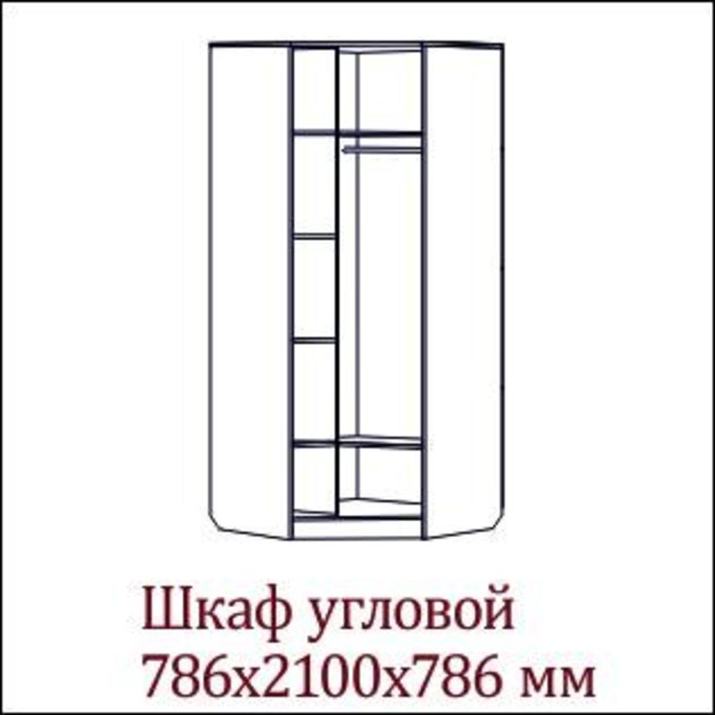 Мебель для спальни Эдем-2: Шкаф угловой Эдем-2 в Диван Плюс
