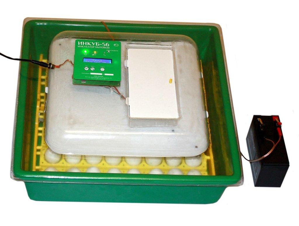 Инкубаторы бытовые, оборудование для бытовых инкубаторов: Бытoвой инкубатор ИНКУБ-56 в Сельский магазин