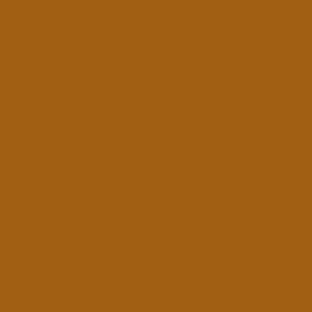 Бумага для пастели LANA: LANA Бумага для пастели,160г, 50х65,сиена, 1л. в Шедевр, художественный салон