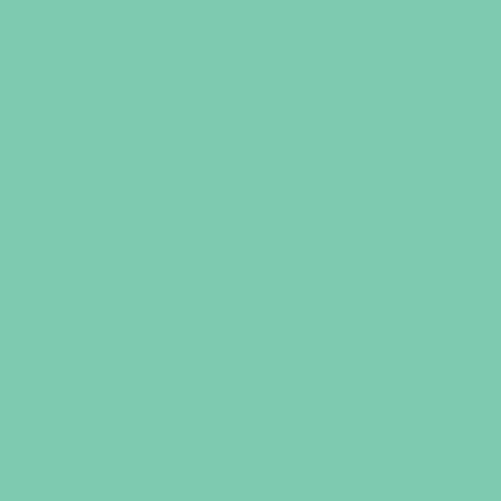 Бумага цветная 50*70см: FOLIA Цветная бумага, 300г/м2 50х70,мята 1лист в Шедевр, художественный салон