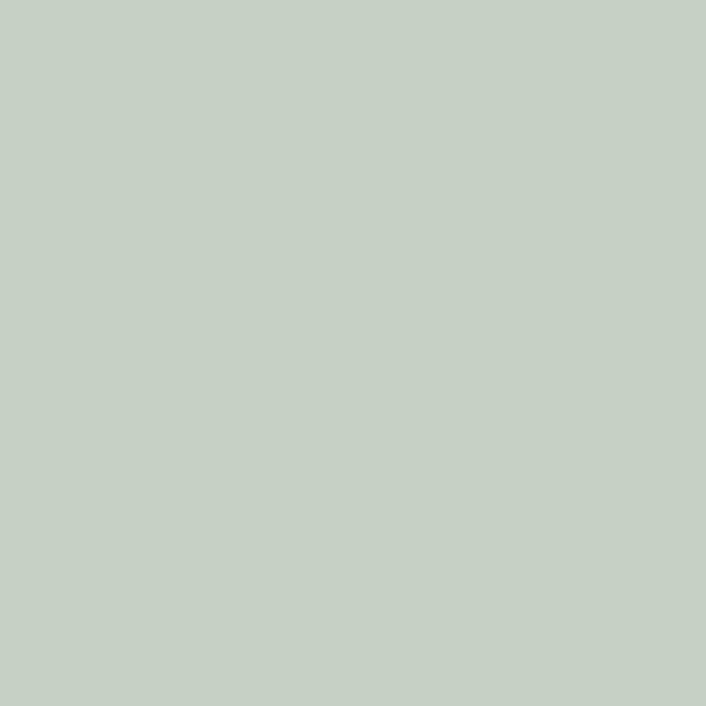 Бумага цветная 50*70см: FOLIA Цветная бумага, 300г/м2 50х70,серый  стальной 1лист в Шедевр, художественный салон