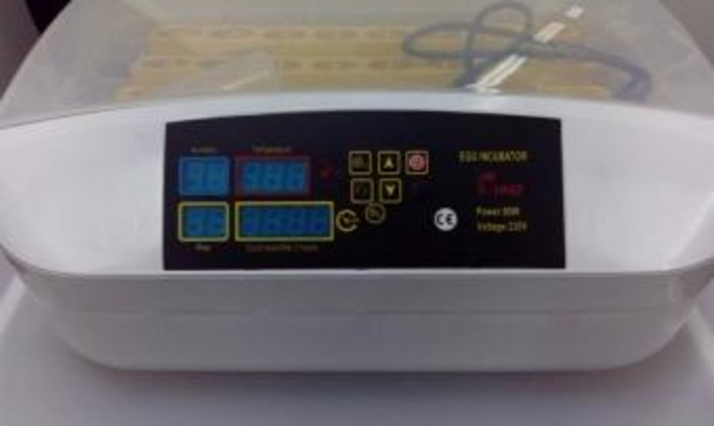 Инкубаторы бытовые, оборудование для бытовых инкубаторов: Автоматический инкубатор JN-32 на 32 яйца с подсветкой в Сельский магазин