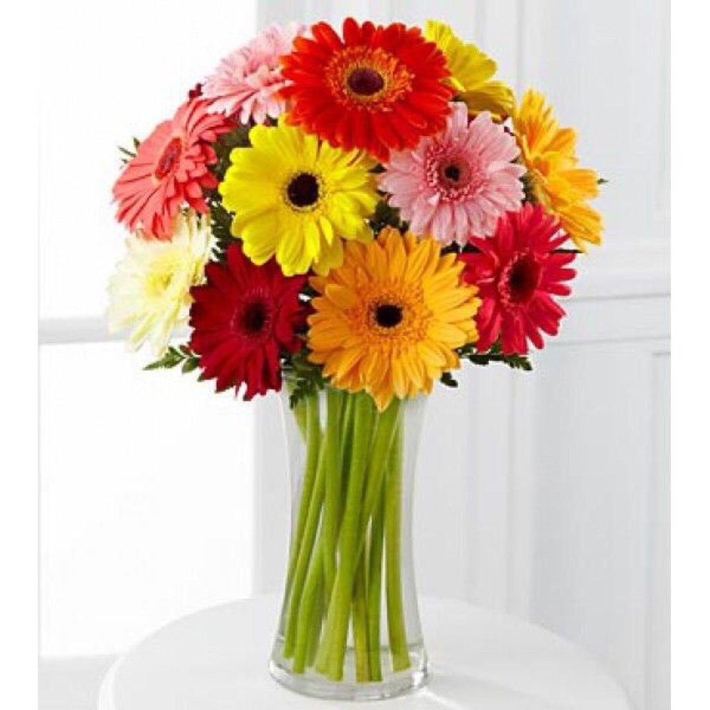 Цветы: Герберы в Николь, магазины цветов