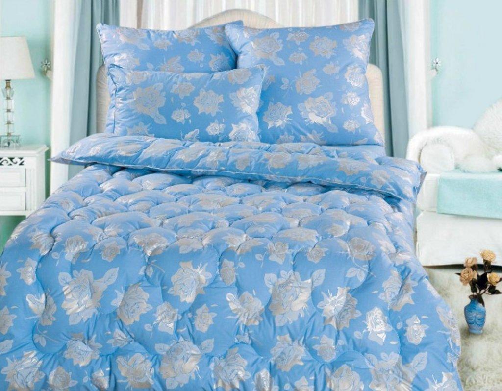 Одеяла Евро: Одеяло Евро 200*205 (50% пух) в Дрёма