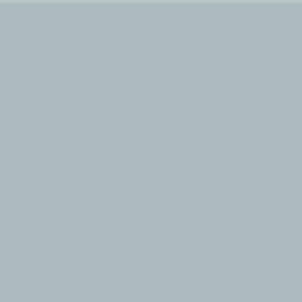 Бумага цветная 50*70см: FOLIA Цветная бумага, 130 гр/м2, 50х70см, серебро, 1 лист в Шедевр, художественный салон