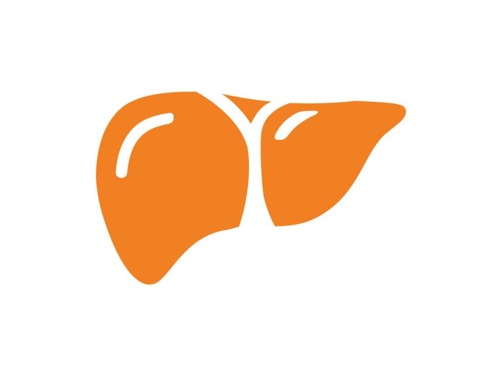 Комплексные лабораторные исследования: Комплекс «Функция печени» в ЛабСтори, медицинская компания