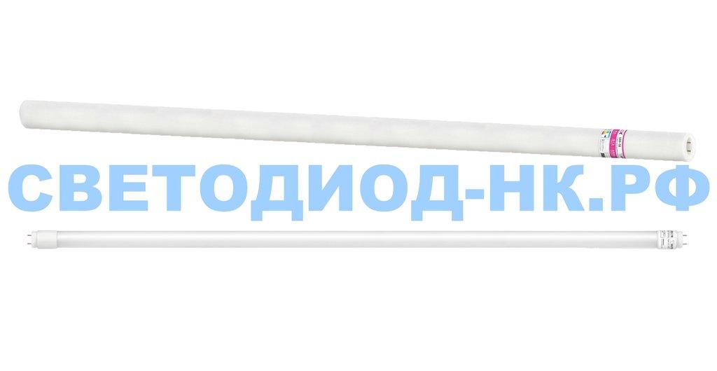 Цоколь G13 (Лампы Т8): Светодиодная лампа LED-T8R-1565М-600-standard 15Вт 230В G13R 6500К 1350Лм 600мм матовая поворотная ASD в СВЕТОВОД