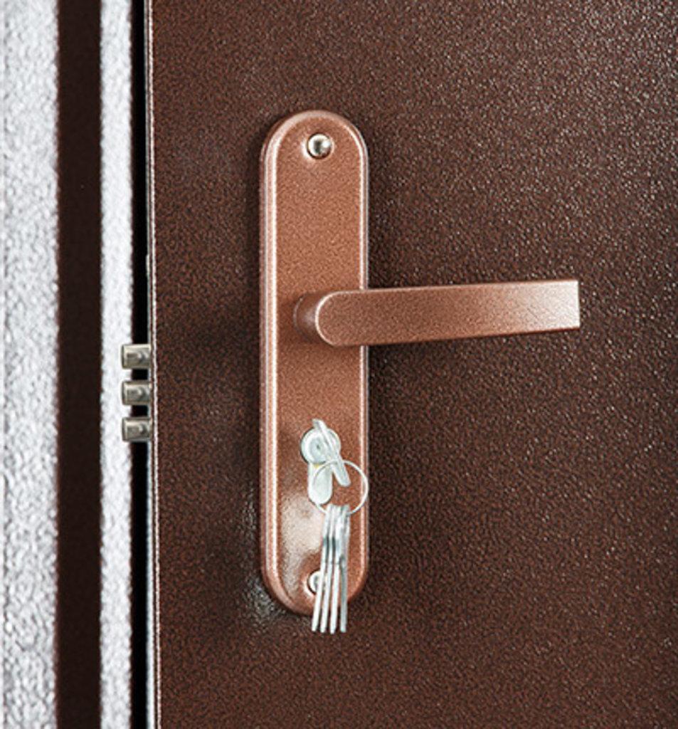 Входные (строй)двери до 70мм: Входная дверь ПРОФИ в STEKLOMASTER