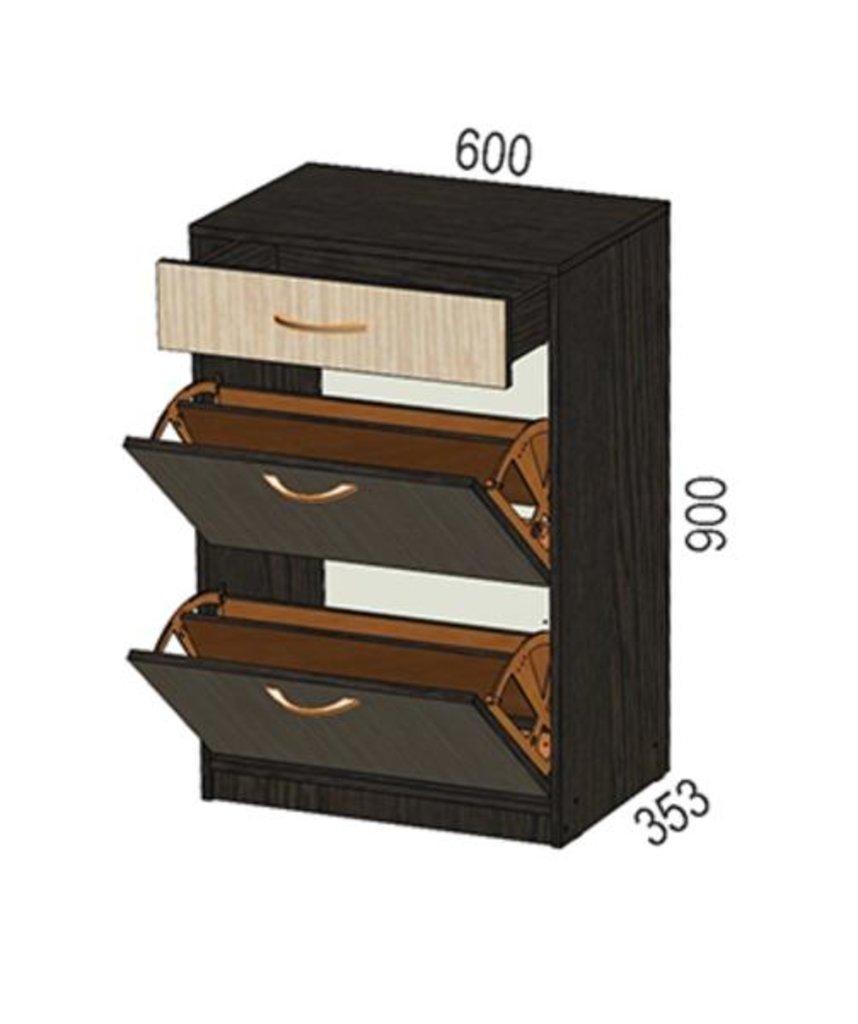 Мебель для прихожей Визит-5: Обувница Визит-5 в Диван Плюс