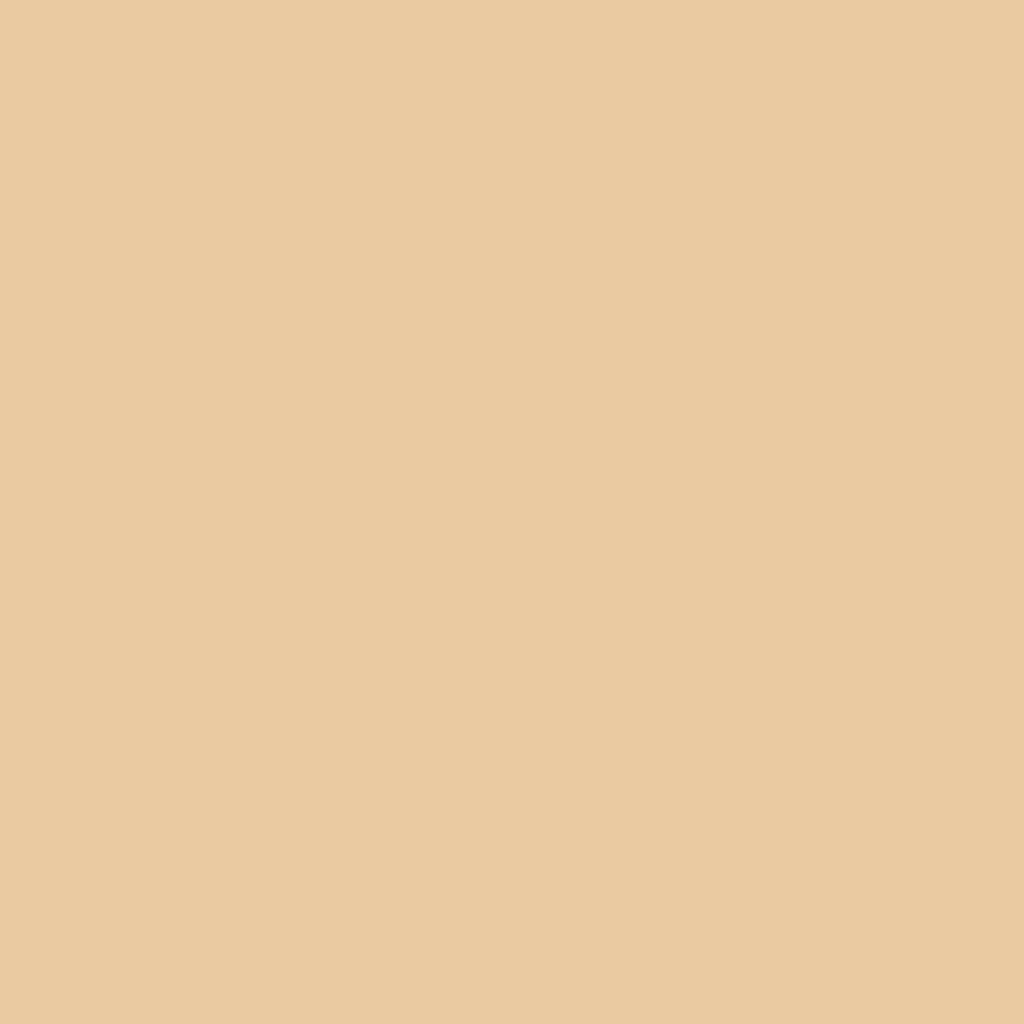 Бумага цветная А4 (21*29.7см): FOLIA Цветная бумага, 130г A4, бежевый темный, 1 лист в Шедевр, художественный салон
