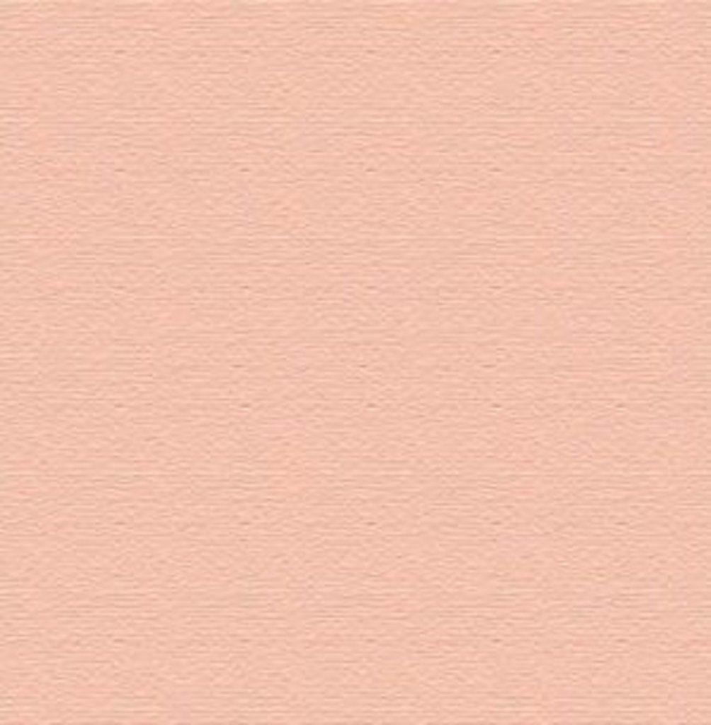 Бумага для пастели LANA: LANA Бумага для пастели,160г, 50х65,розовый кварц, 1л. в Шедевр, художественный салон