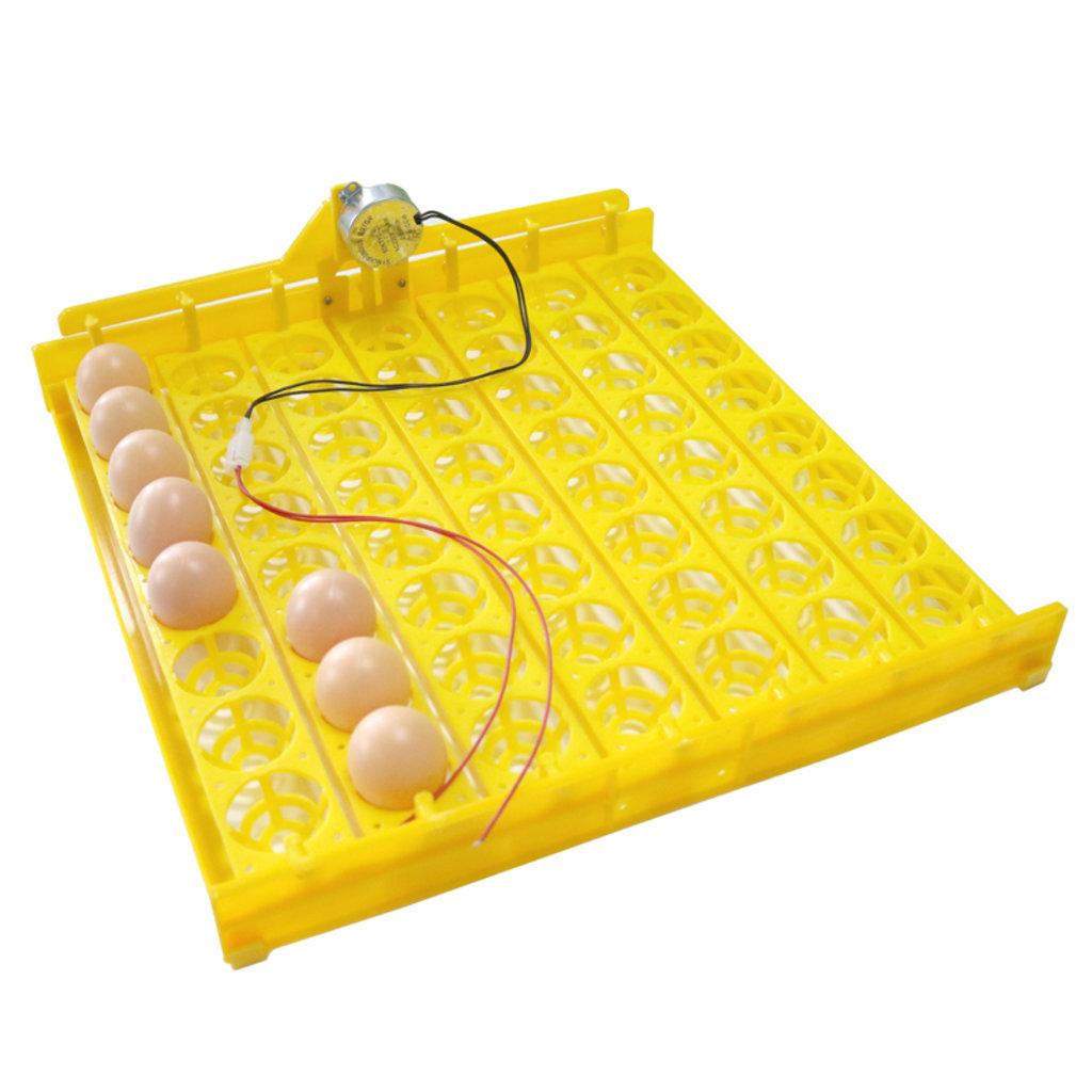 Инкубаторы бытовые, оборудование для бытовых инкубаторов: Инкубатор на 56 яиц с резервным питанием 12В в Сельский магазин