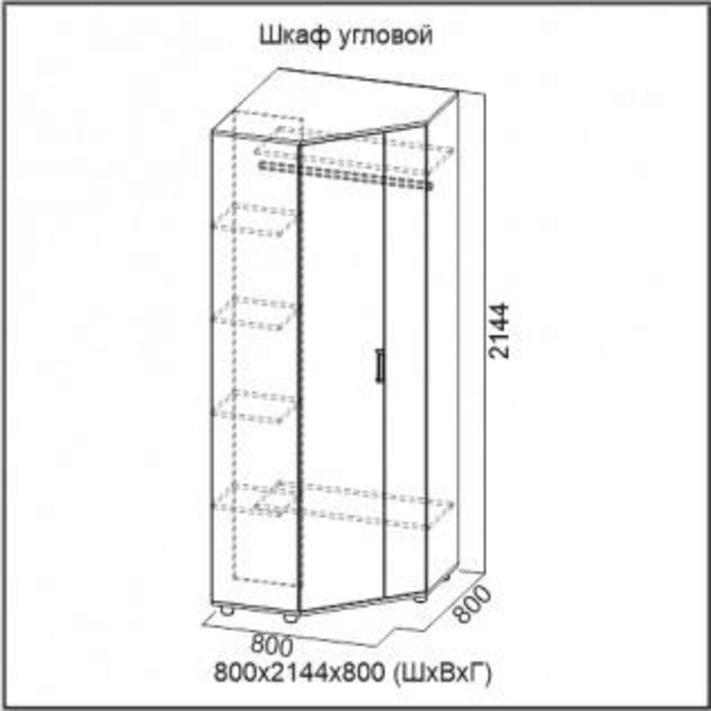 Мебель для прихожей Визит-1: Шкаф угловой Визит-1 в Диван Плюс