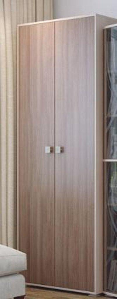 Мебель для гостиной Нота-16: Шкаф двухстворчатый Нота-16 в Диван Плюс