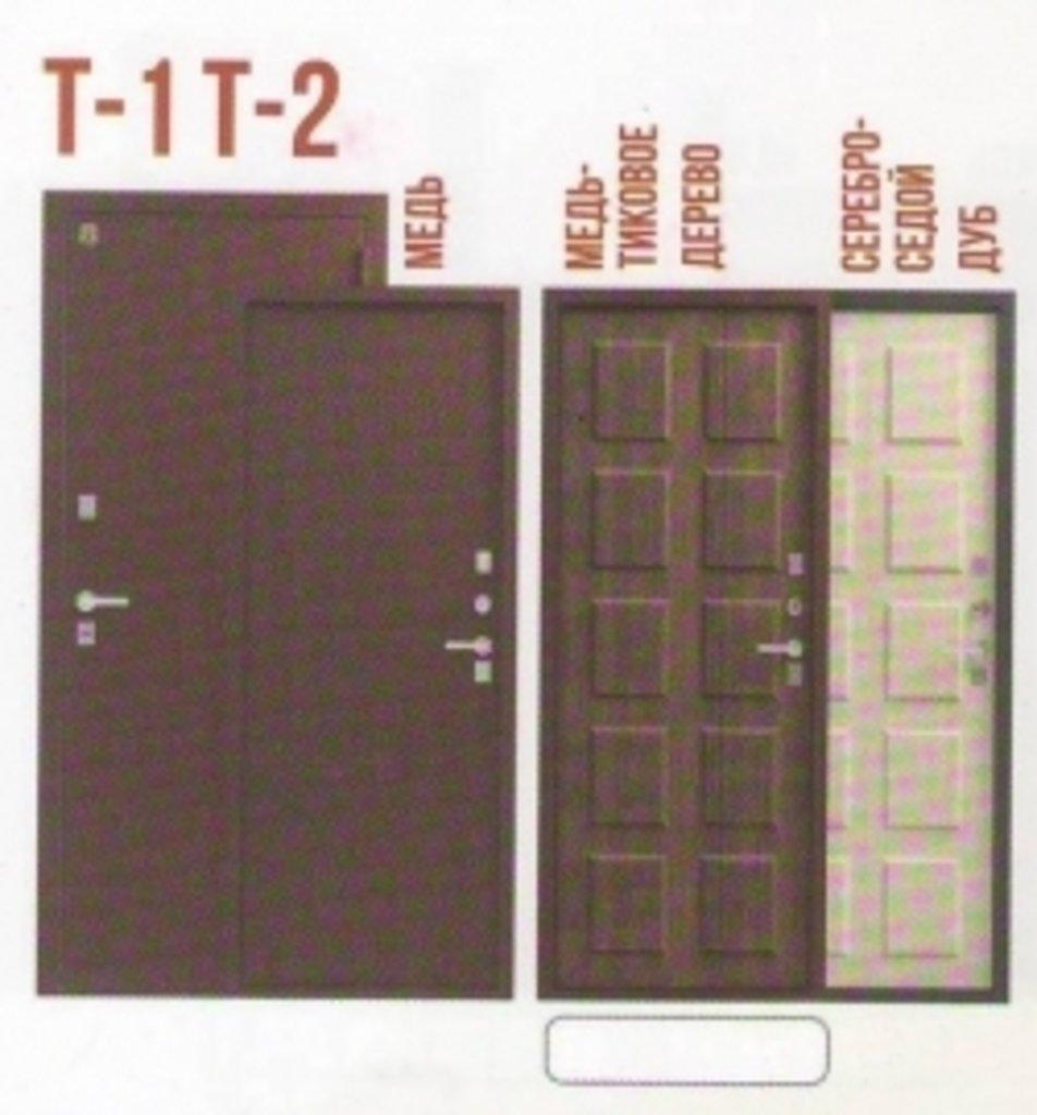 Двери ЛЕГИОН: Т-1, Т-2 в Модуль Плюс