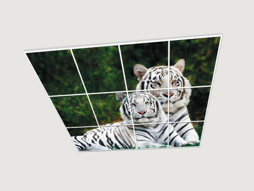 Витражные (стеклянные) потолки: Серия «Животные» в Мир Потолков