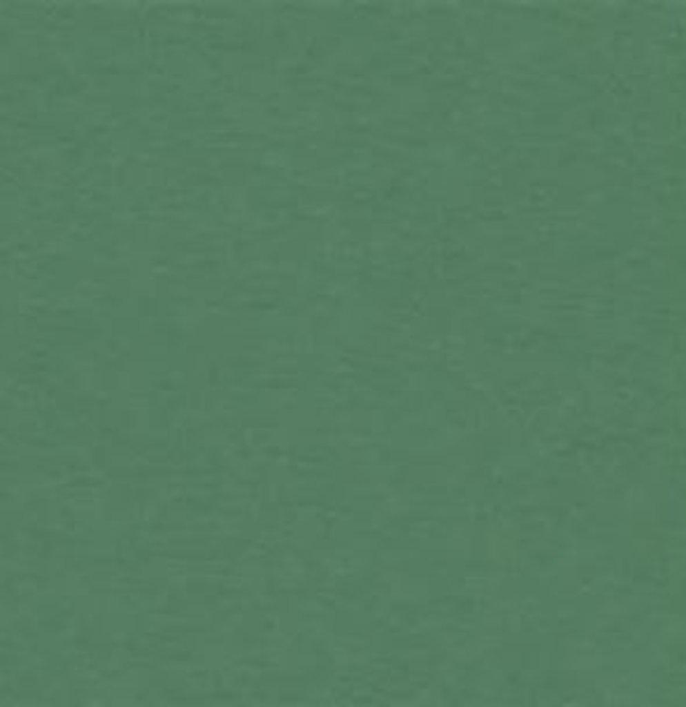 Бумага для пастели LANA: LANA Бумага для пастели,160г, 21х29,7, зелёный еловый, 1л. в Шедевр, художественный салон