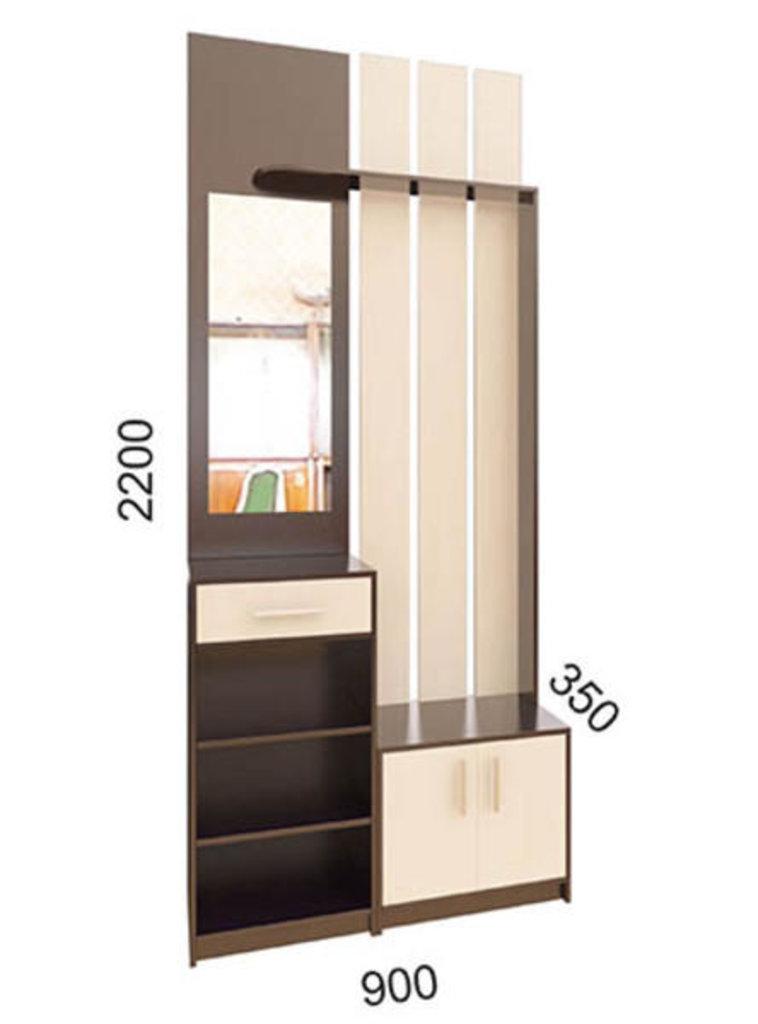 Мебель для прихожей Визит-5: Вешалка с зеркалом Визит-5 в Диван Плюс