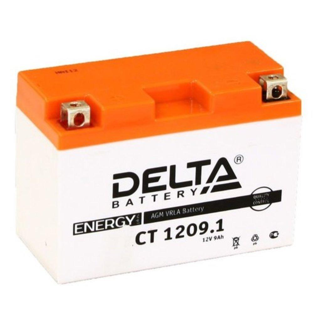 Delta: DELTA CT1209.1 в БазаАКБ