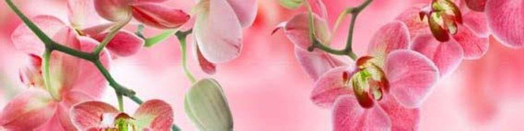 Фартуки ЛакКом 4 мм.: Орхидея №3 в Ателье мебели Формат