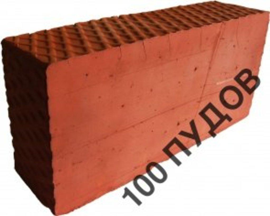 Блоки стеновые: Кирпич М150 в 100 пудов