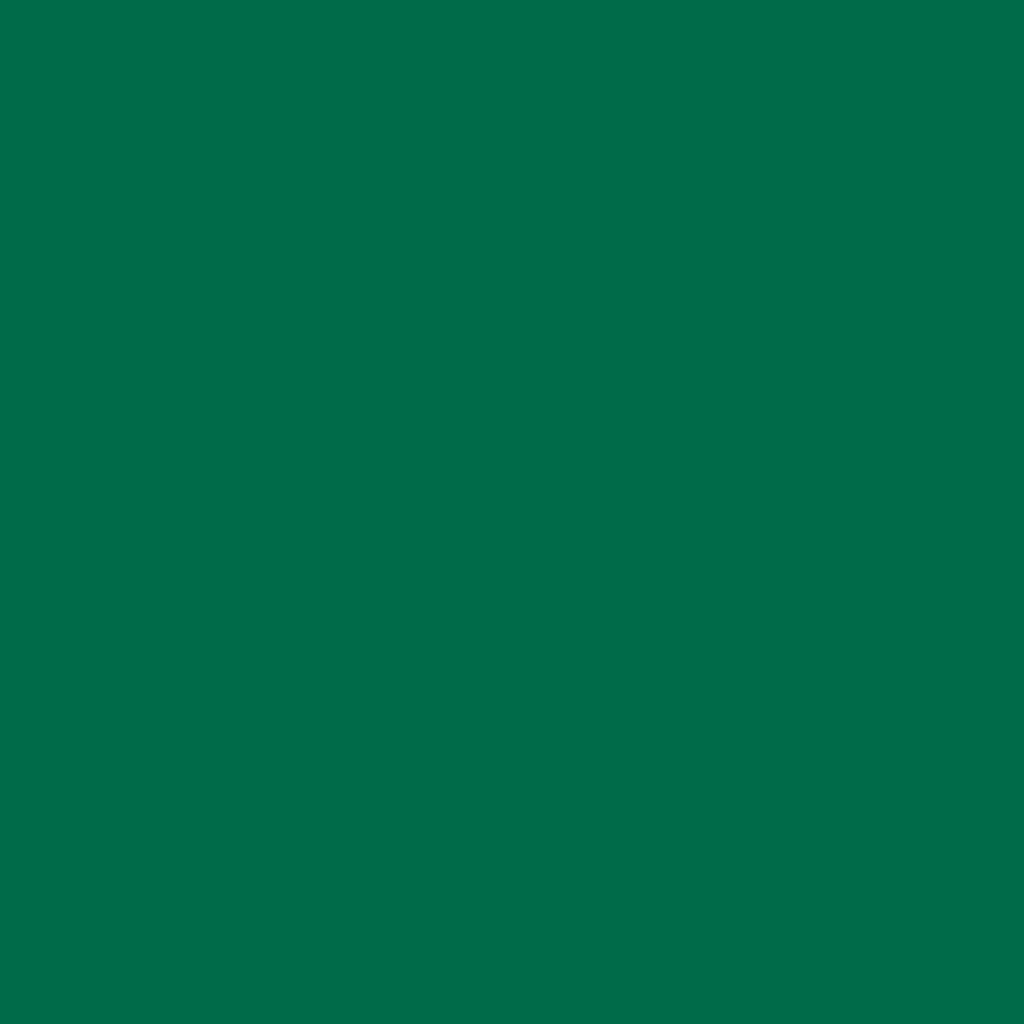 Бумага цветная 50*70см: FOLIA Цветная бумага, 130 гр/м2, 50х70см, зеленый еловый, 1 лист в Шедевр, художественный салон