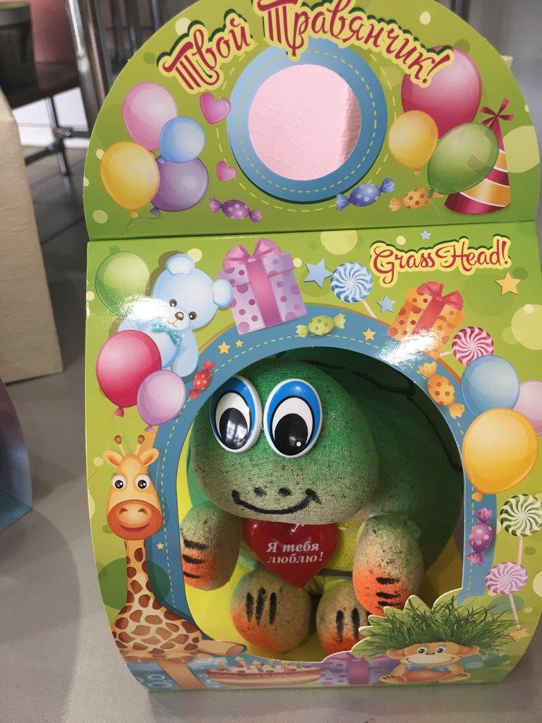 Сувениры, подарки: Игрушка № 3 травянчик в Николь, магазины цветов