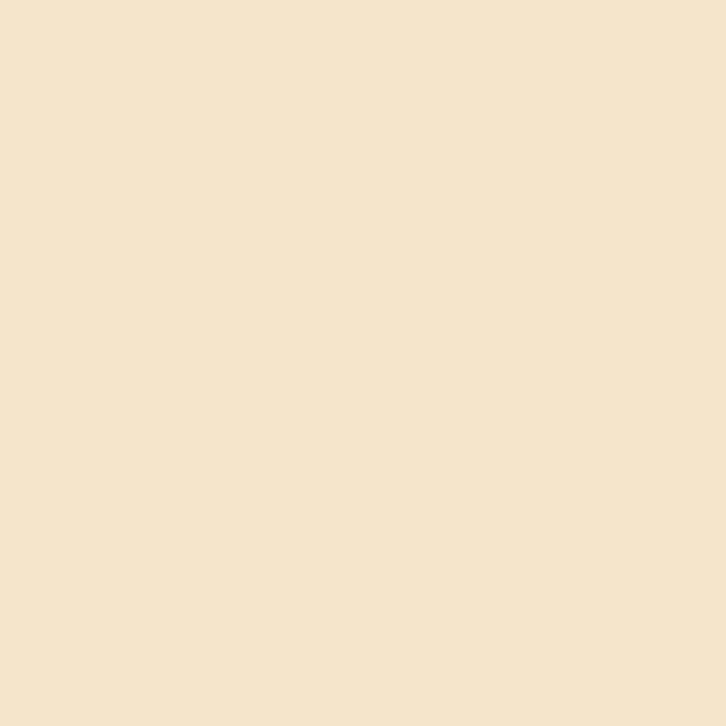 Бумага цветная А4 (21*29.7см): FOLIA Цветная бумага, 300г, A4, бежевый, 1 лист в Шедевр, художественный салон