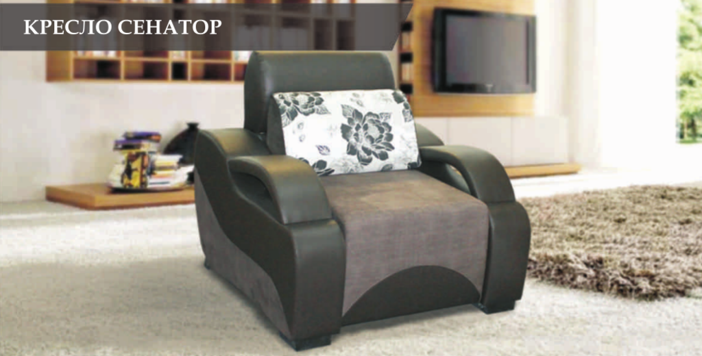 Диваны и мягкие кресла: Кресло Сенатор в Стильная мебель