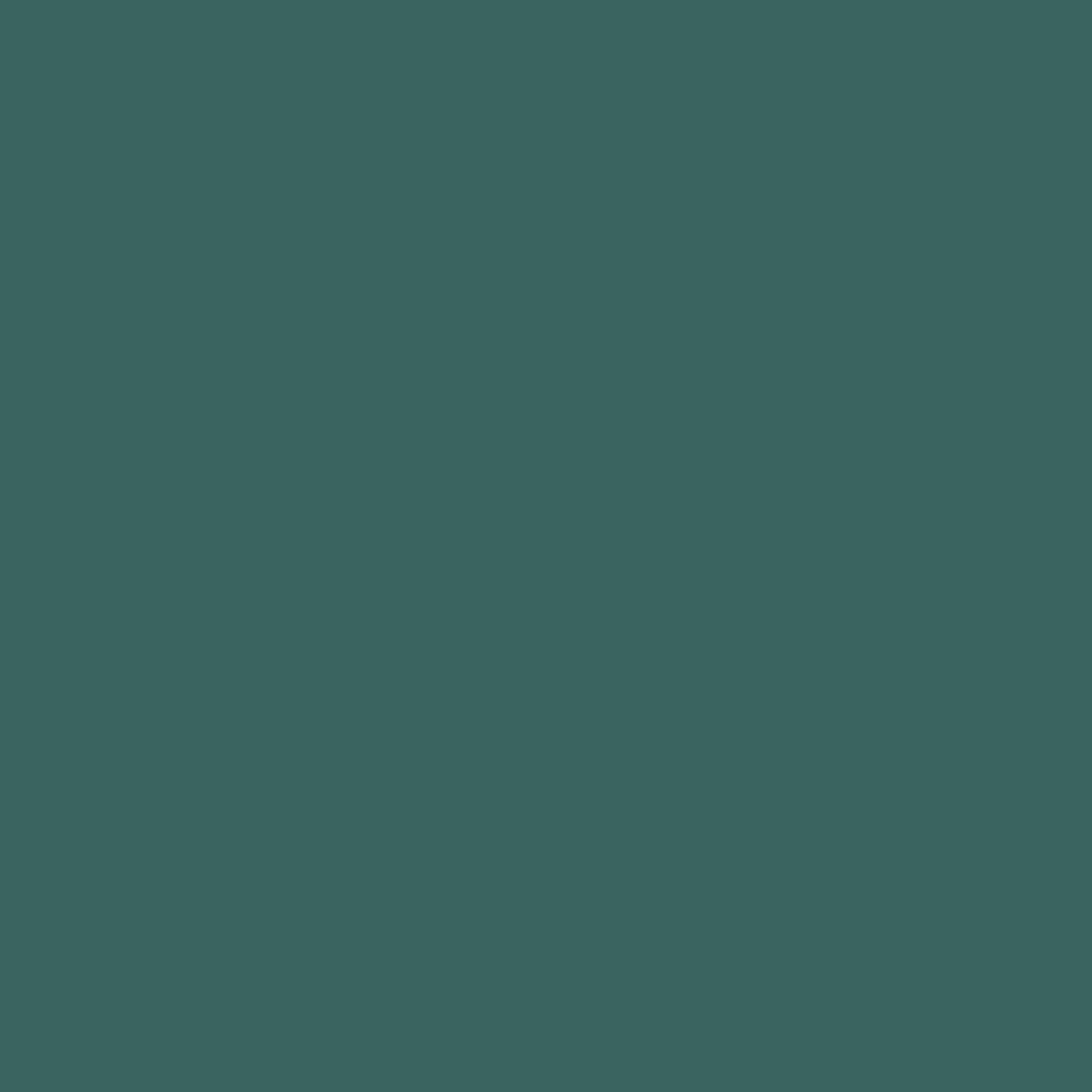 Бумага для пастели LANA: LANA Бумага для пастели,160г, 50х65,виридоновый зеленый, 1л. в Шедевр, художественный салон