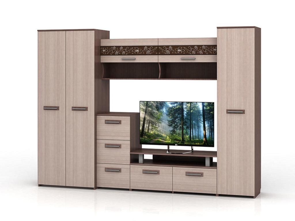 Мебель для гостиных, общее: Гостиная Мечта в Стильная мебель