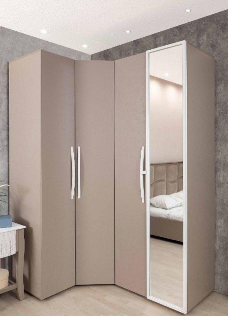 Мебель для спален, общее: Шкаф для одежды Brownie 54 (ФАСАД Стандарт + Стандарт) в Стильная мебель