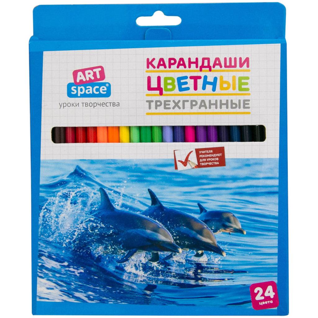 """Карандаши, мелки: Набор цв.карандашей ArtSpace 24 цв.""""Животный мир"""", трехгран.,заточен., картон, уп. европодвес в Шедевр, художественный салон"""
