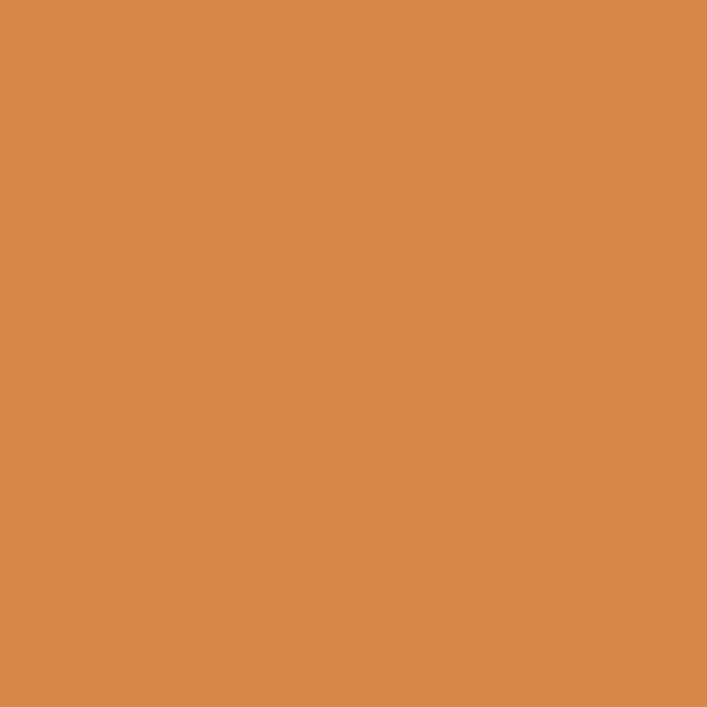 Бумага для пастели LANA: LANA Бумага для пастели,160г, 50х65,охра, 1л. в Шедевр, художественный салон