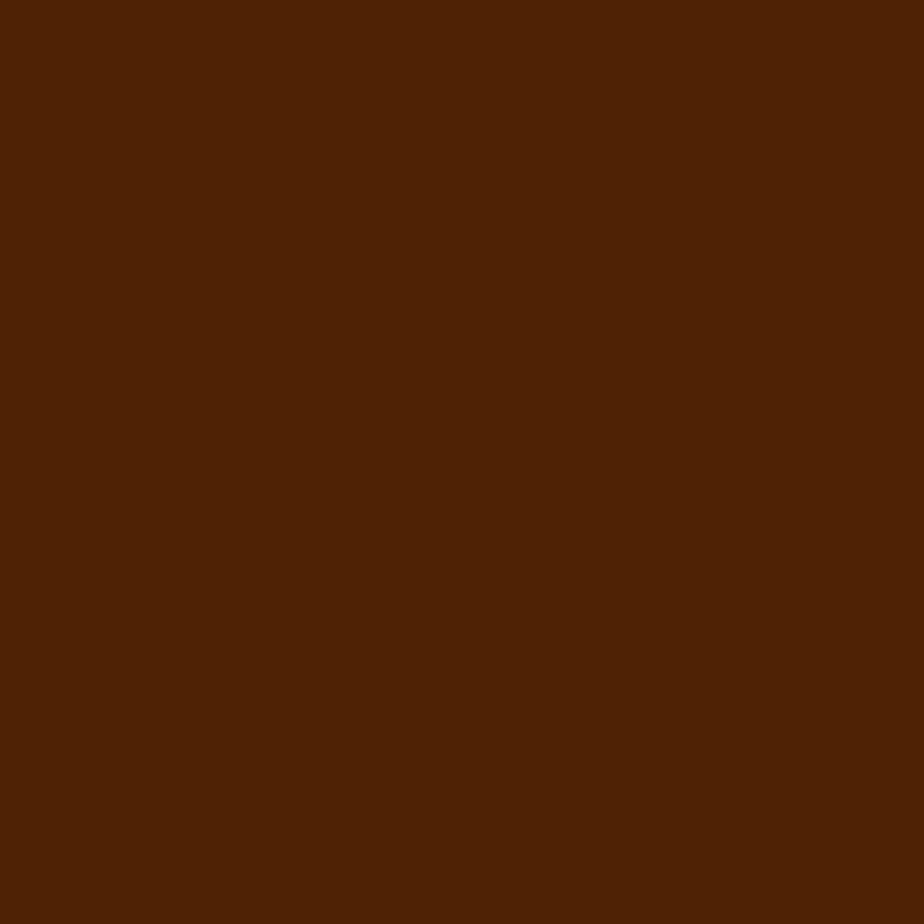 Бумага для пастели LANA: LANA Бумага для пастели,160г, 50х65,темно-коричневый, 1л. в Шедевр, художественный салон