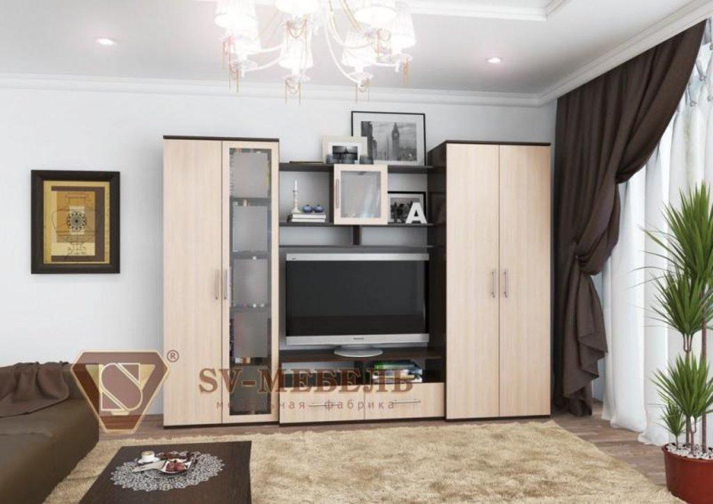 Гостиные: Мебель для гостиной Гамма-8 в Диван Плюс