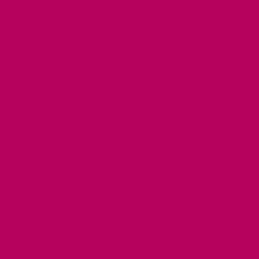 Бумага для пастели LANA: LANA Бумага для пастели,160г, 50х65,багряный, 1л. в Шедевр, художественный салон