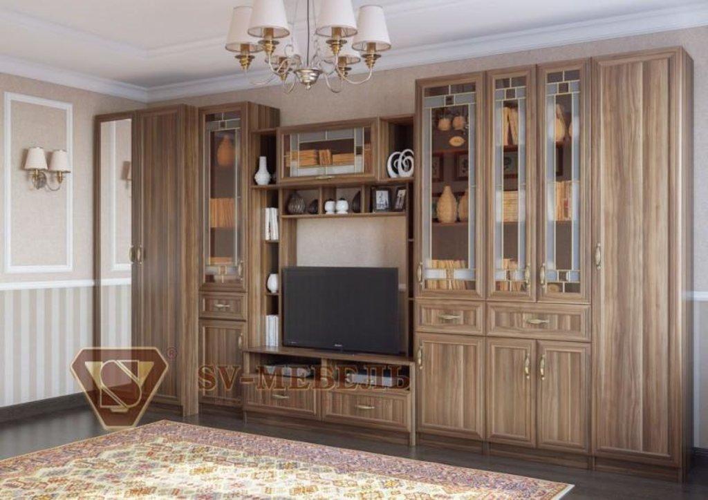 Мебель для гостиной Вега: Шкаф двухстворчатый с зеркалом ВМ-05 Вега в Диван Плюс