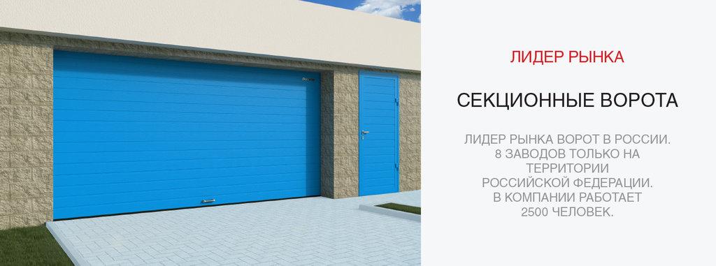 Гаражные ворота DoorHan: Гаражные ворота DoorHan ш2500хв2125мм, автоматика (1пульт) в АБ ГРУПП
