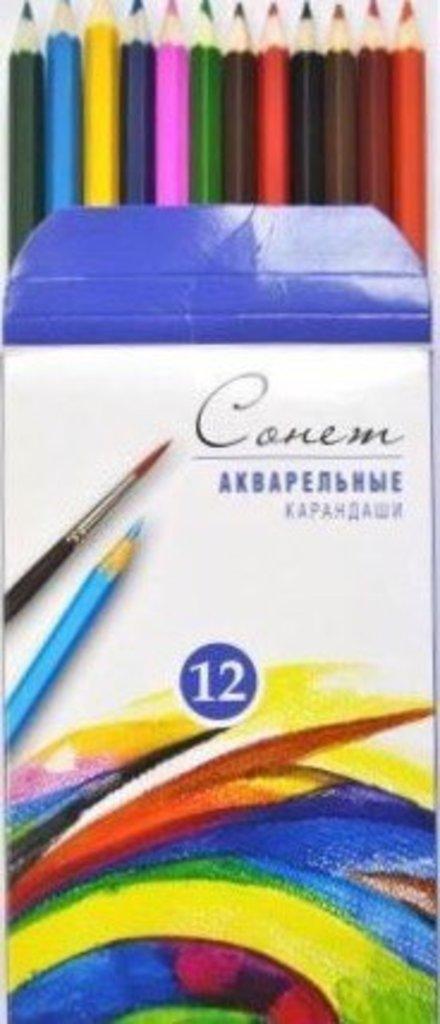 """Акварельные карандаши: Акварельные цветные карандаши """"Сонет"""" 12цв в Шедевр, художественный салон"""