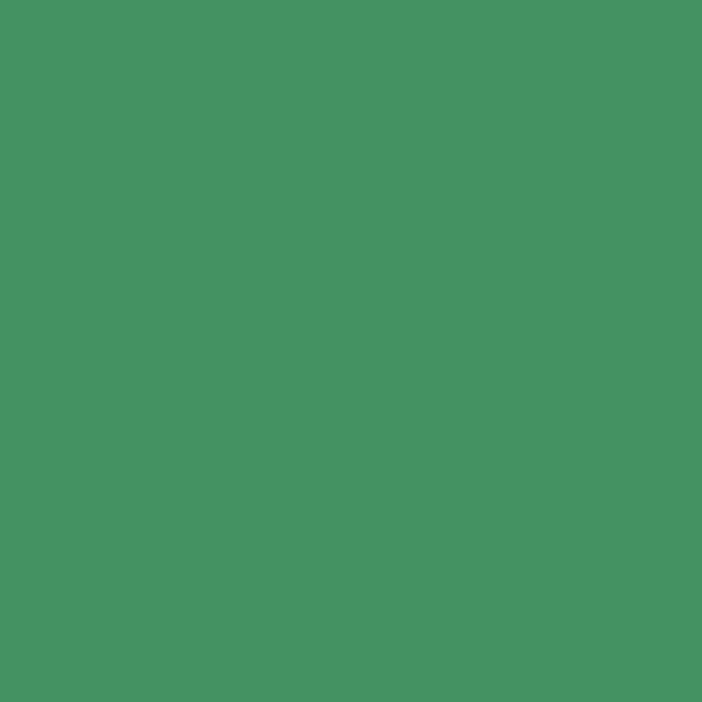 Бумага цветная 50*70см: FOLIA Цветная бумага, 300г/м2 50х70, зелёный мох 1лист в Шедевр, художественный салон
